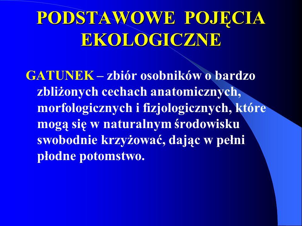 PODSTAWOWE POJĘCIA EKOLOGICZNE GATUNEK – zbiór osobników o bardzo zbliżonych cechach anatomicznych, morfologicznych i fizjologicznych, które mogą się w naturalnym środowisku swobodnie krzyżować, dając w pełni płodne potomstwo.