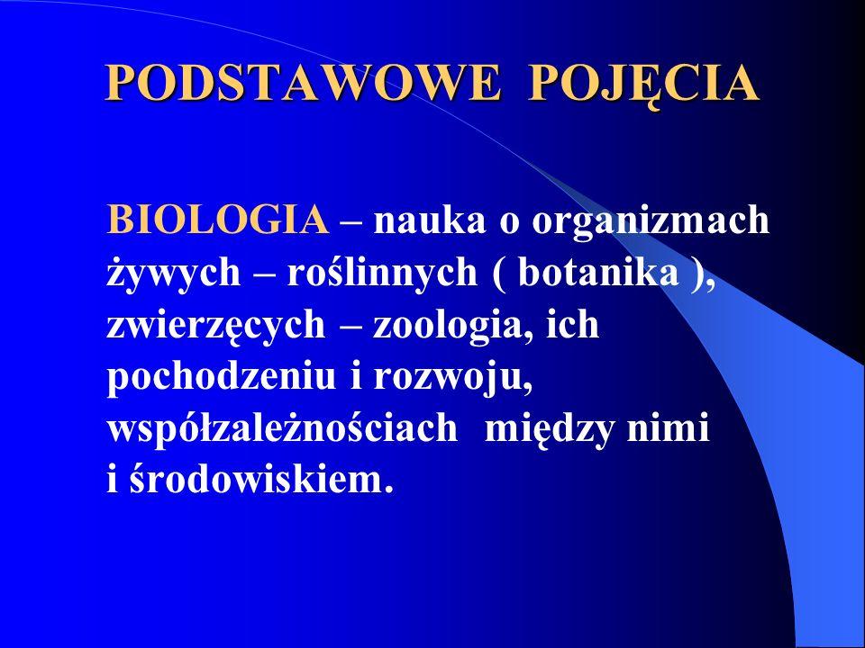 PODSTAWOWE POJĘCIA BIOLOGIA – nauka o organizmach żywych – roślinnych ( botanika ), zwierzęcych – zoologia, ich pochodzeniu i rozwoju, współzależnościach między nimi i środowiskiem.