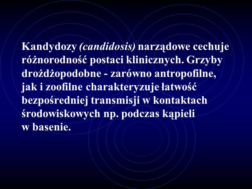 Kandydozy (candidosis) narządowe cechuje różnorodność postaci klinicznych. Grzyby drożdżopodobne - zarówno antropofilne, jak i zoofilne charakteryzuje