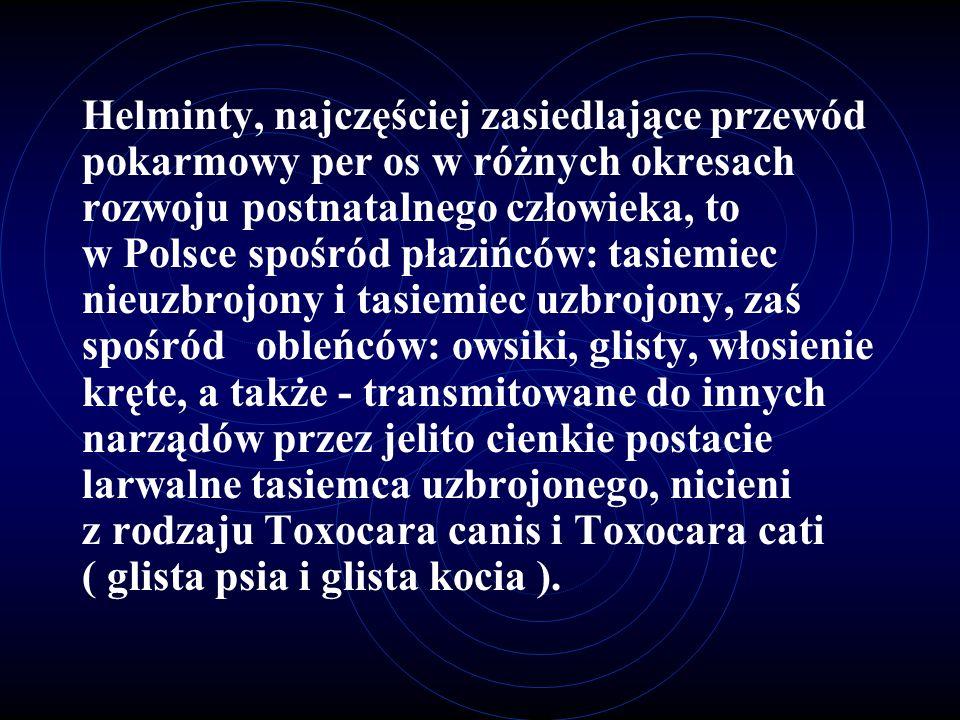 Helminty, najczęściej zasiedlające przewód pokarmowy per os w różnych okresach rozwoju postnatalnego człowieka, to w Polsce spośród płazińców: tasiemi