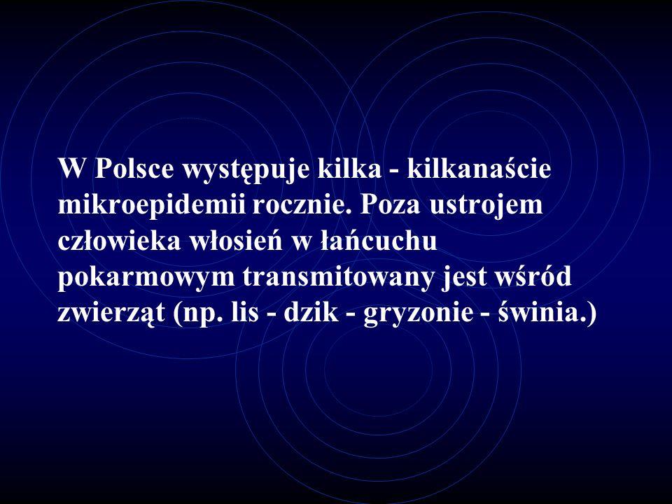 W Polsce występuje kilka - kilkanaście mikroepidemii rocznie. Poza ustrojem człowieka włosień w łańcuchu pokarmowym transmitowany jest wśród zwierząt