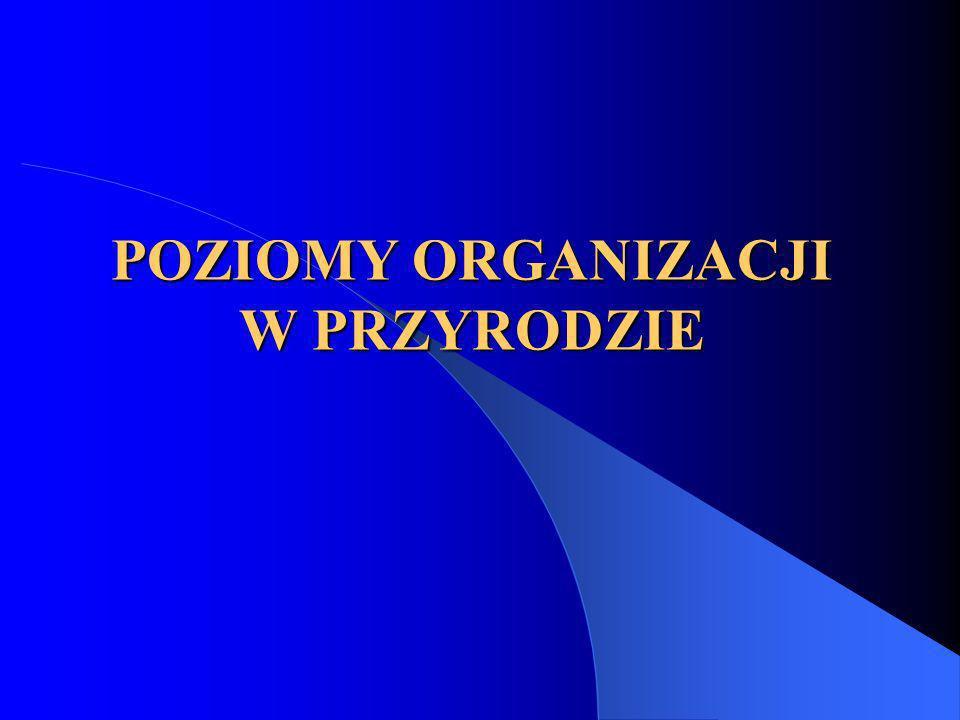 POZIOMY ORGANIZACJI W PRZYRODZIE