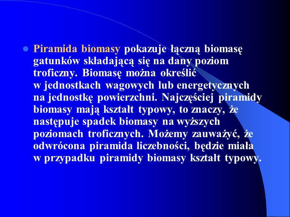 Piramida biomasy pokazuje łączną biomasę gatunków składającą się na dany poziom troficzny. Biomasę można określić w jednostkach wagowych lub energetyc