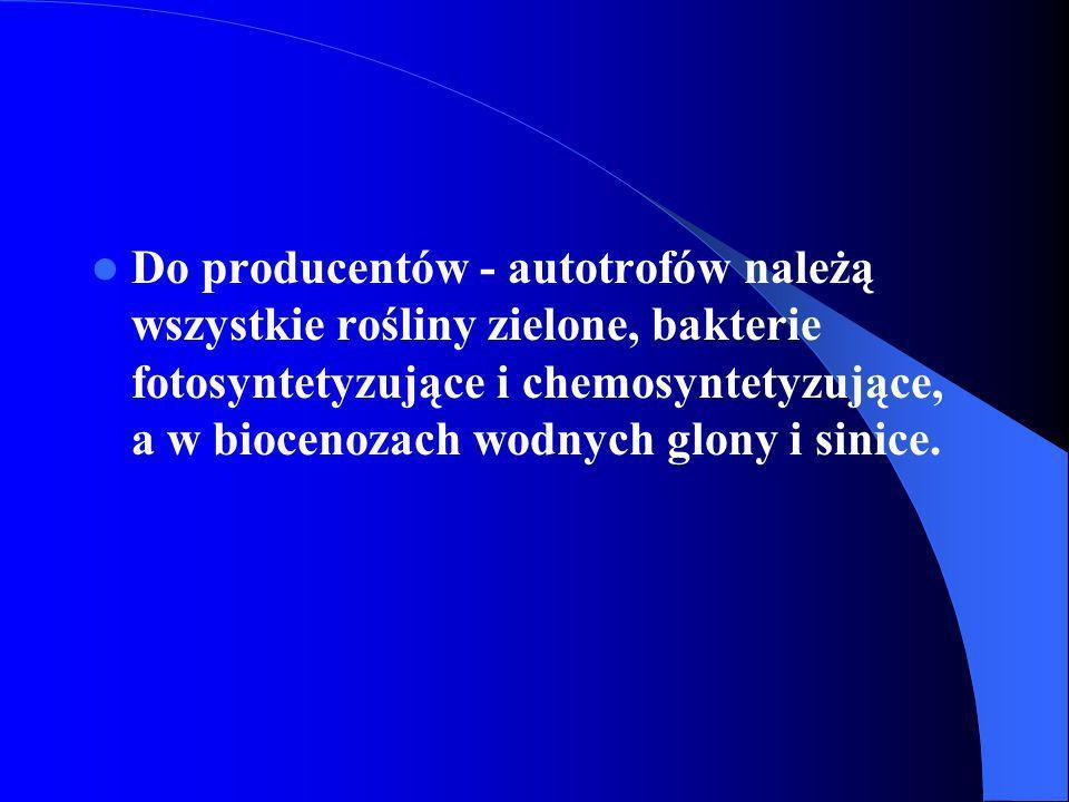 Do producentów - autotrofów należą wszystkie rośliny zielone, bakterie fotosyntetyzujące i chemosyntetyzujące, a w biocenozach wodnych glony i sinice.