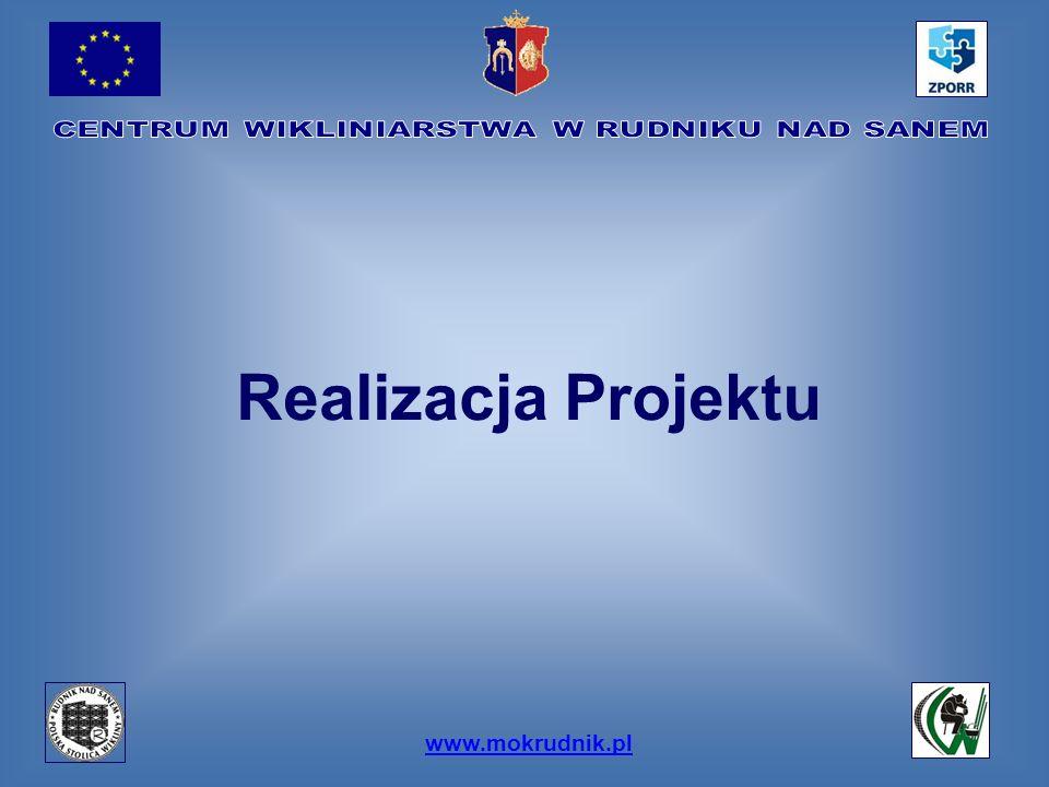 www.mokrudnik.pl Realizacja Projektu