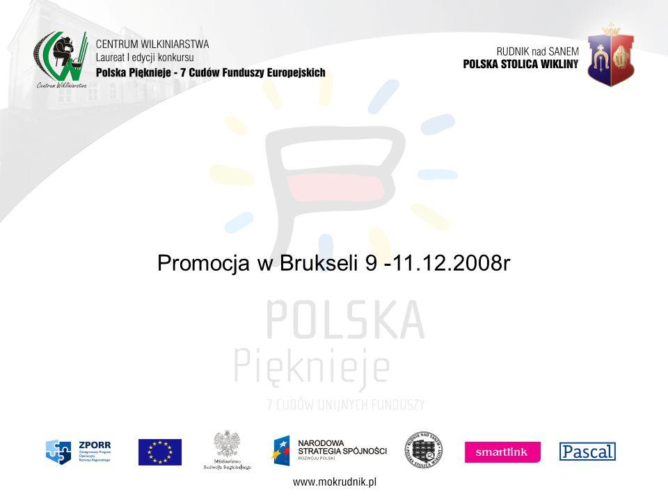 Promocja w Brukseli 9 -11.12.2008r