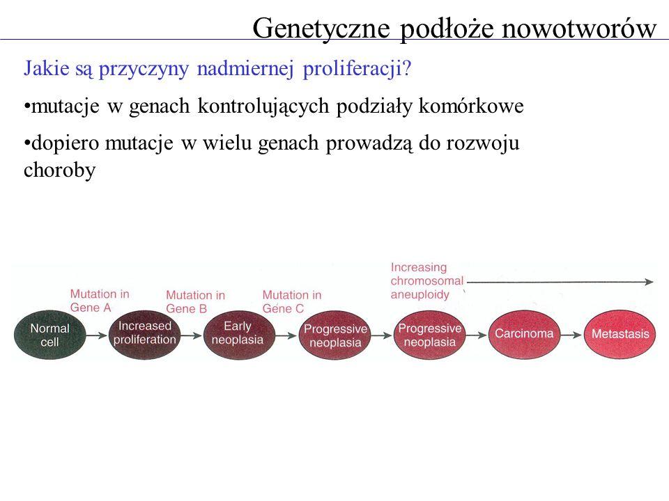 Genetyczne podłoże nowotworów Jakie są przyczyny nadmiernej proliferacji.