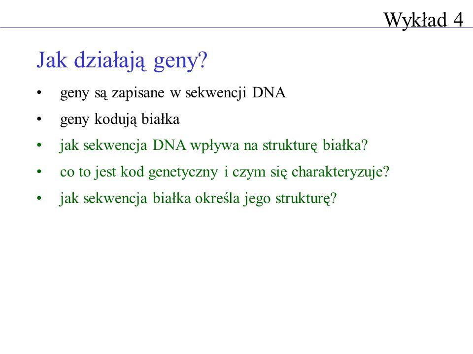 Jak działają geny? geny są zapisane w sekwencji DNA geny kodują białka jak sekwencja DNA wpływa na strukturę białka? co to jest kod genetyczny i czym