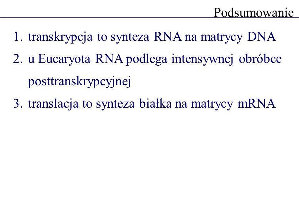 1.transkrypcja to synteza RNA na matrycy DNA 2.u Eucaryota RNA podlega intensywnej obróbce posttranskrypcyjnej 3.translacja to synteza białka na matry