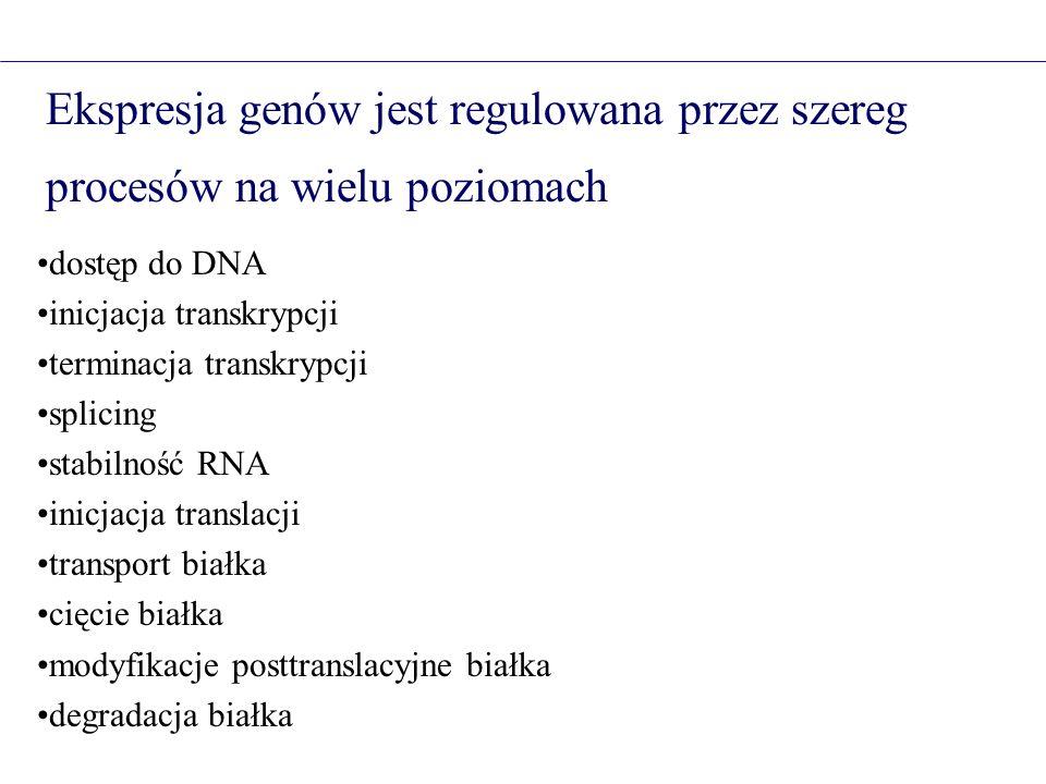 Mutacje Rodzaje zmian sekwencji DNA punktowe aatcttgtt -> aatcgtgtt delecje aatcttgtt -> aat tgtt insercje aatcttgtt -> aatcacttgtt Wpływ mutacji na funkcjonowanie genu synonimiczne (Aminokwas X -> Aminokwas X) zmiany sensu (Aminokwas X -> Aminokwas Y) nonsens (Aminokwas X -> STOP) ominięcie kodonu terminacyjnego (STOP -> Aminokwas X) zmiana miejsca splicingowego wstawienie aminokwasów usunięcie aminokwasów zmiana sekwencji regulacyjnej