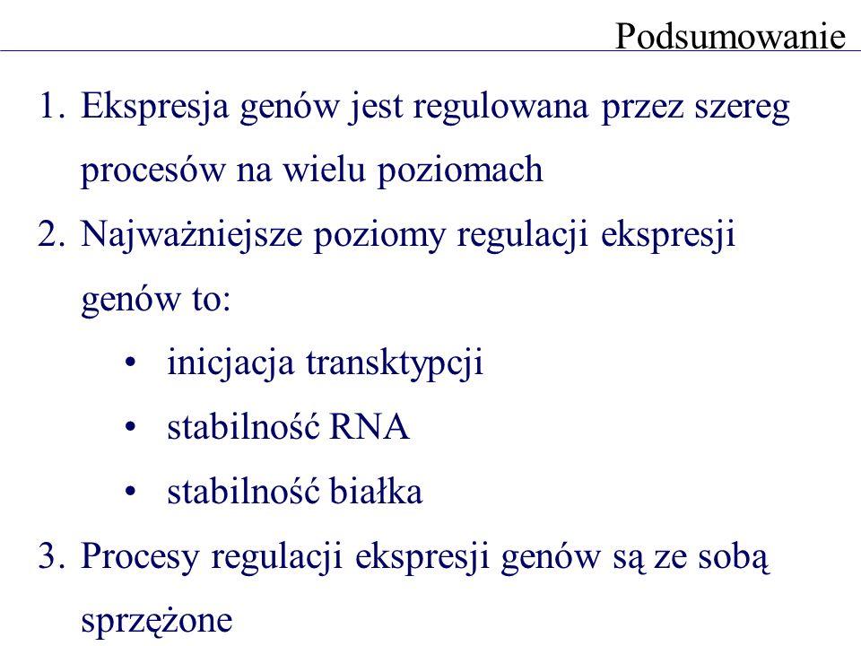 1.Ekspresja genów jest regulowana przez szereg procesów na wielu poziomach 2.Najważniejsze poziomy regulacji ekspresji genów to: inicjacja transktypcji stabilność RNA stabilność białka 3.Procesy regulacji ekspresji genów są ze sobą sprzężone Podsumowanie