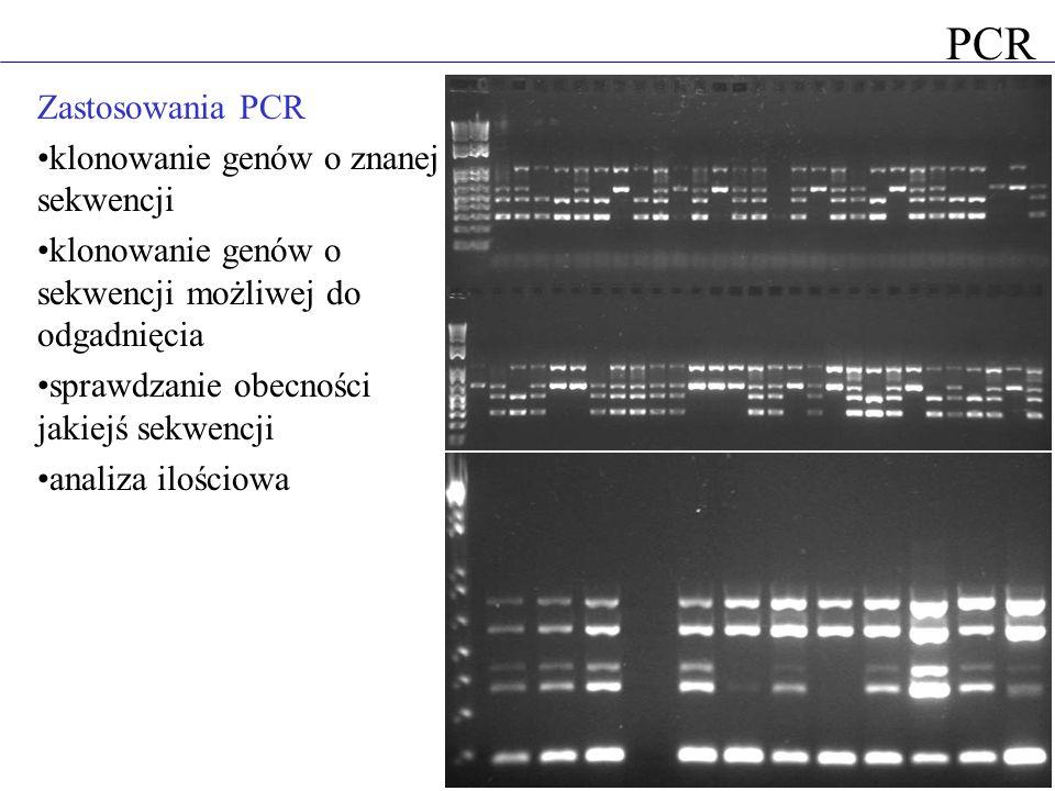 Zastosowania PCR klonowanie genów o znanej sekwencji klonowanie genów o sekwencji możliwej do odgadnięcia sprawdzanie obecności jakiejś sekwencji anal