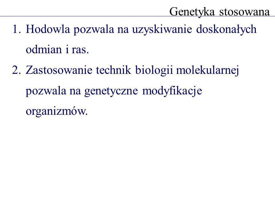 1.Hodowla pozwala na uzyskiwanie doskonałych odmian i ras. 2.Zastosowanie technik biologii molekularnej pozwala na genetyczne modyfikacje organizmów.