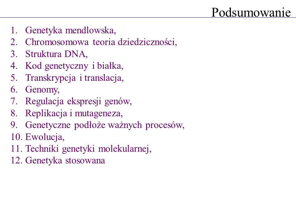 Podsumowanie 1.Genetyka mendlowska, 2.Chromosomowa teoria dziedziczności, 3.Struktura DNA, 4.Kod genetyczny i białka, 5.Transkrypcja i translacja, 6.G