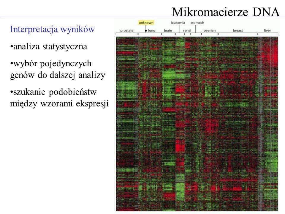 Interpretacja wyników analiza statystyczna wybór pojedynczych genów do dalszej analizy szukanie podobieństw między wzorami ekspresji Mikromacierze DNA