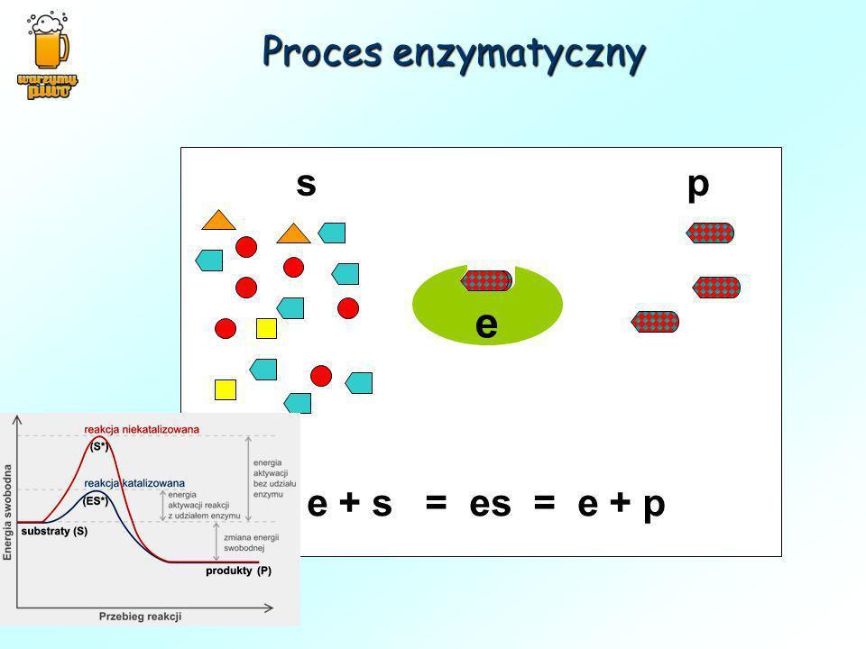 e s p e + s = es = e + p Proces enzymatyczny