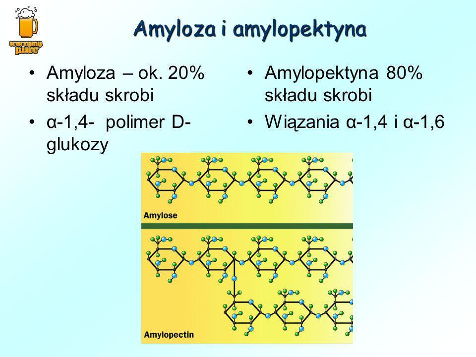 Amyloza i amylopektyna Amyloza – ok. 20% składu skrobi α-1,4- polimer D- glukozy Amylopektyna 80% składu skrobi Wiązania α-1,4 i α-1,6
