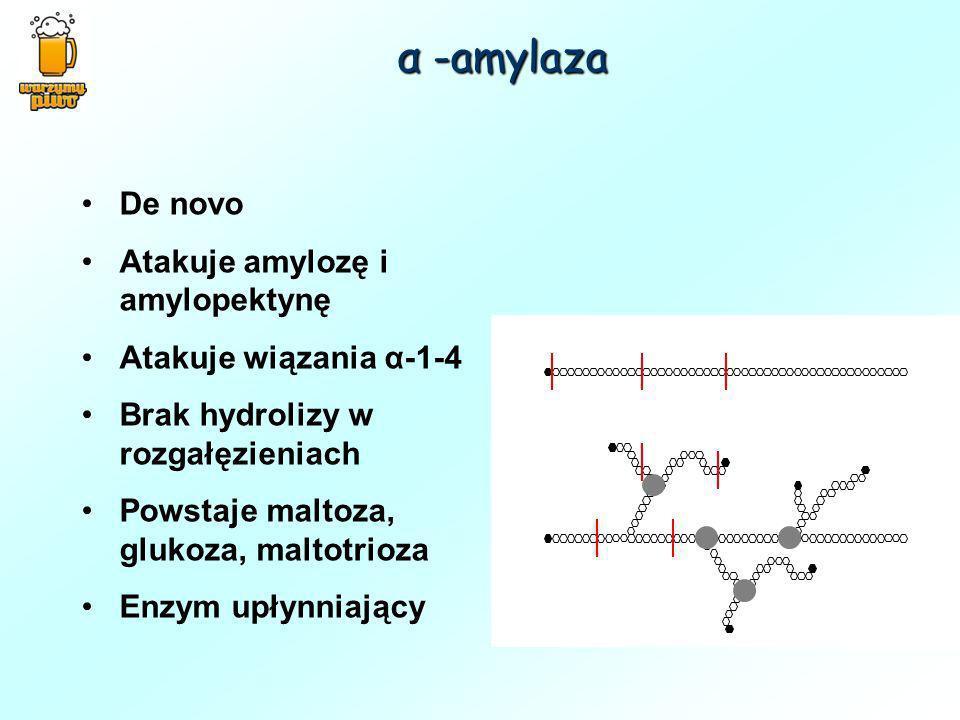 De novo Atakuje amylozę i amylopektynę Atakuje wiązania α-1-4 Brak hydrolizy w rozgałęzieniach Powstaje maltoza, glukoza, maltotrioza Enzym upłynniają