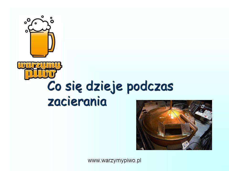 www.warzymypiwo.pl Co się dzieje podczas zacierania