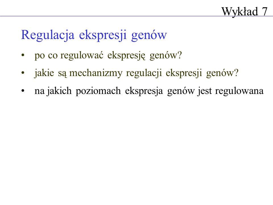 Regulacja ekspresji genów po co regulować ekspresję genów? jakie są mechanizmy regulacji ekspresji genów? na jakich poziomach ekspresja genów jest reg