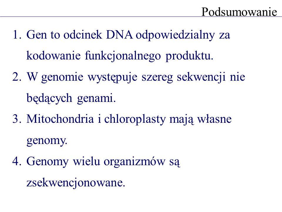 Regulacja ekspresji genów po co regulować ekspresję genów.