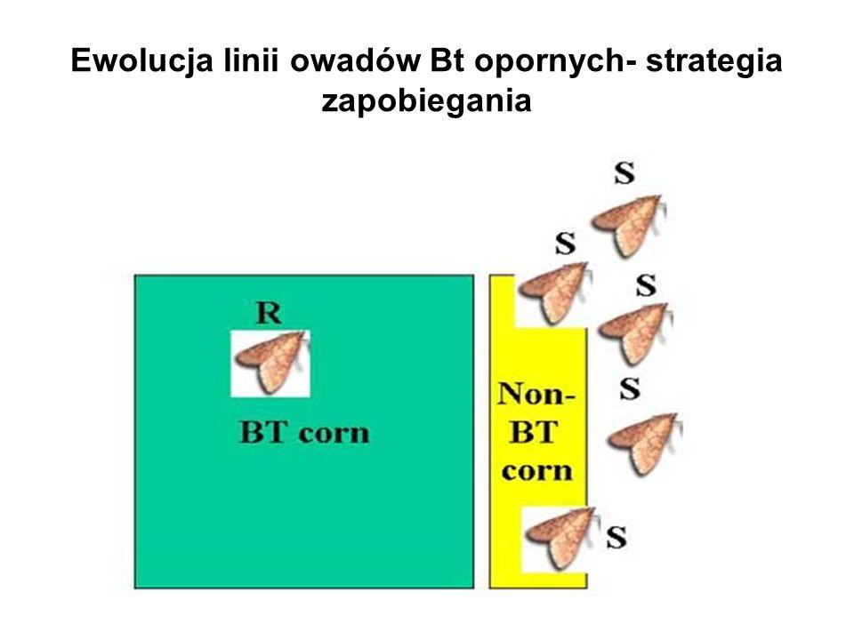 Ewolucja linii owadów Bt opornych- strategia zapobiegania
