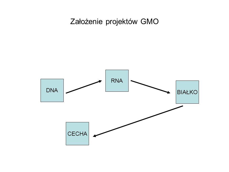 Założenie projektów GMO DNA RNA BIAŁKO CECHA