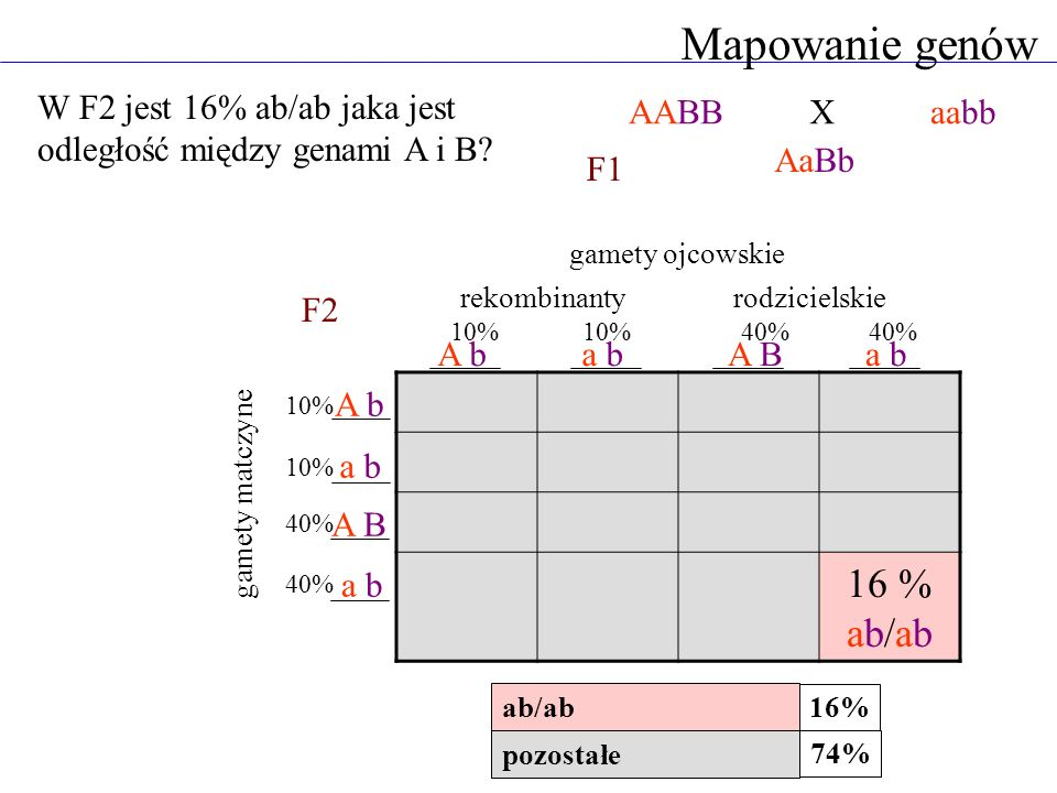 Mapowanie genów AABBaabb AaBb 16 % ab/ab A ba bA Ba b A b a b A B a b gamety ojcowskie gamety matczyne X F1 F2 pozostałe ab/ab 16% 74% rekombinanty ro