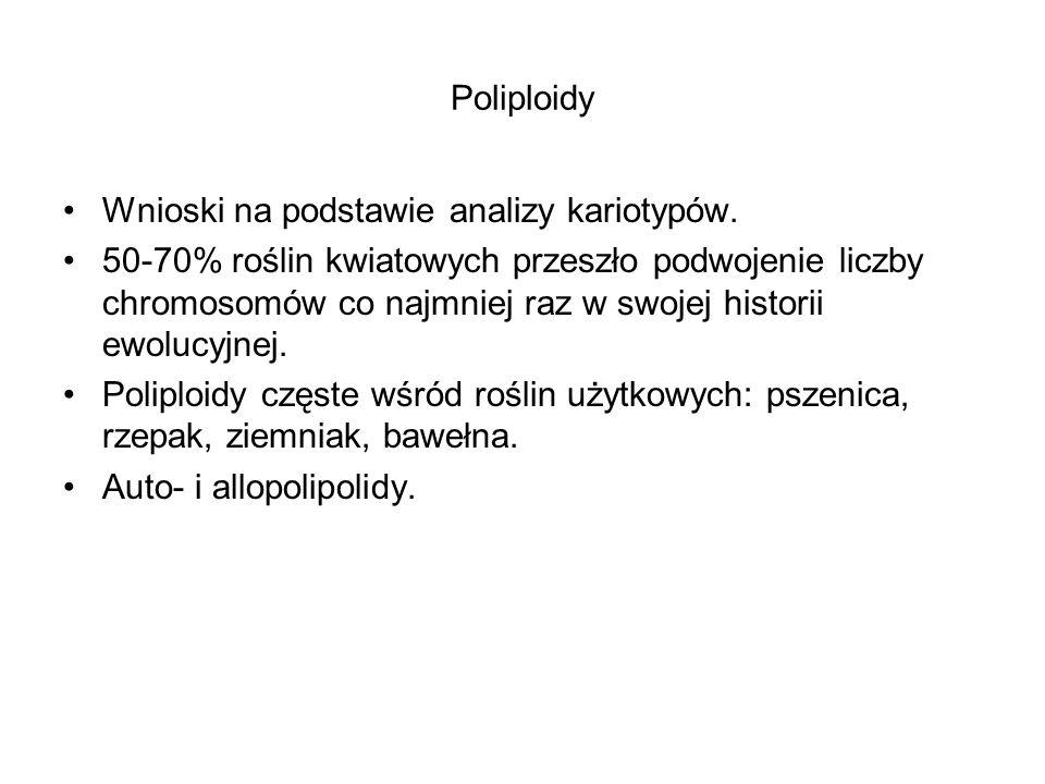 Poliploidy Wnioski na podstawie analizy kariotypów. 50-70% roślin kwiatowych przeszło podwojenie liczby chromosomów co najmniej raz w swojej historii