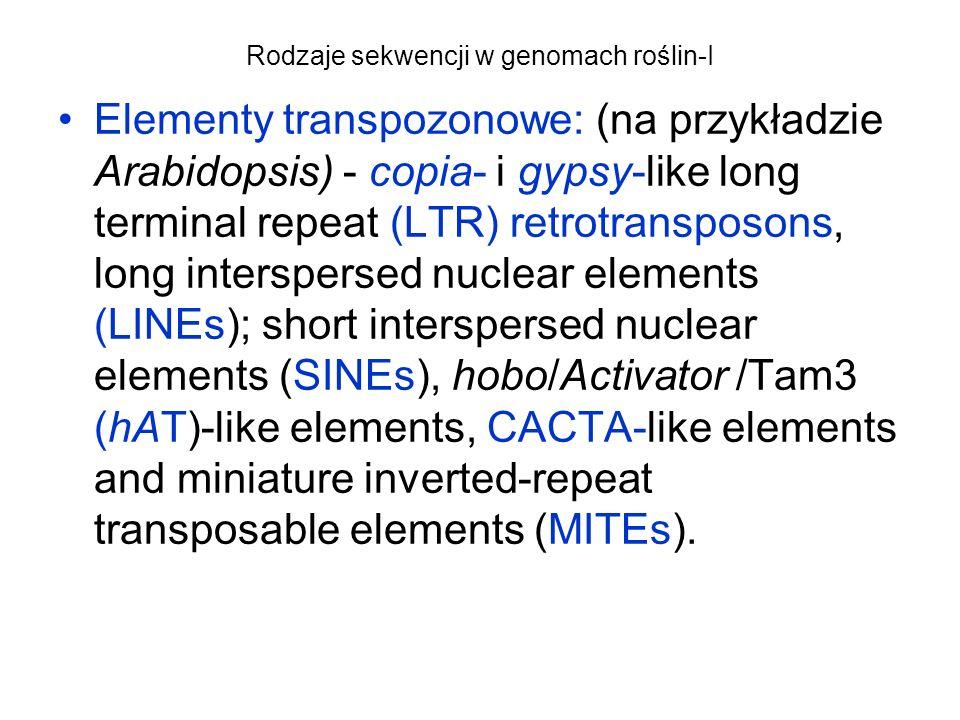 Rodzaje sekwencji w genomach roślin-I Elementy transpozonowe: (na przykładzie Arabidopsis) - copia- i gypsy-like long terminal repeat (LTR) retrotrans