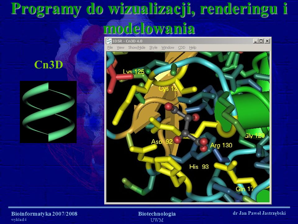 Bioinformatyka 2007/2008 wykład 4 Biotechnologia UWM dr Jan Paweł Jastrzębski Cn3D Programy do wizualizacji, renderingu i modelowania