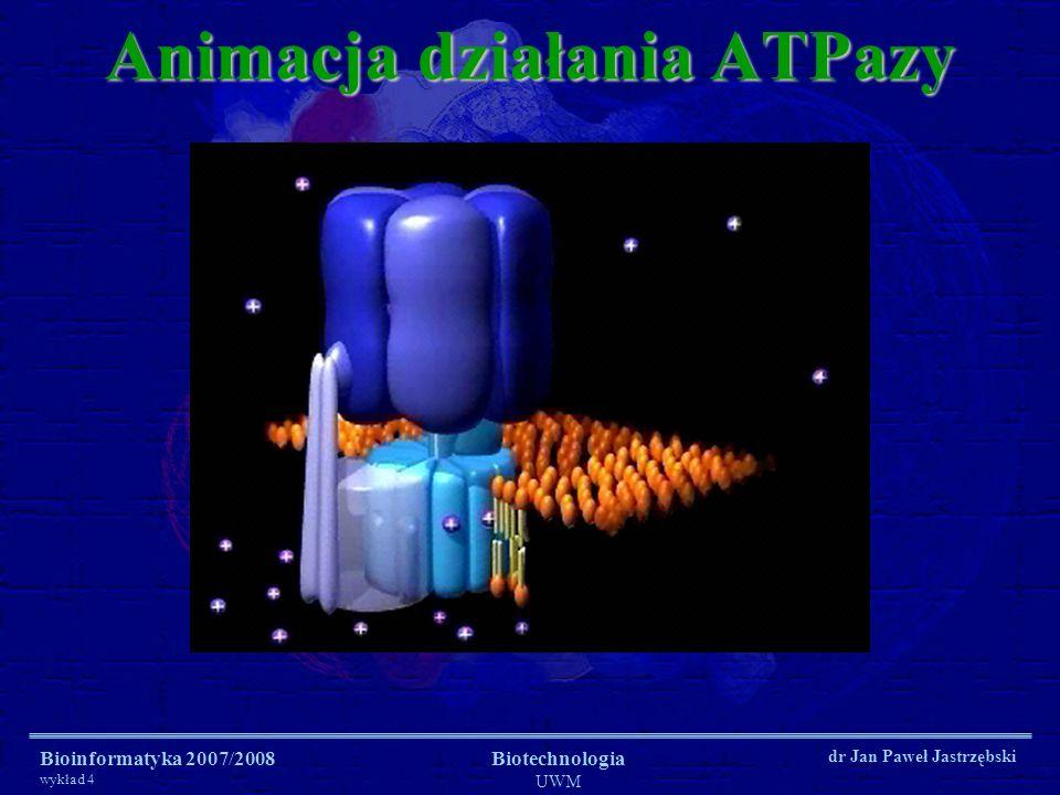 Bioinformatyka 2007/2008 wykład 4 Biotechnologia UWM dr Jan Paweł Jastrzębski Animacja działania ATPazy