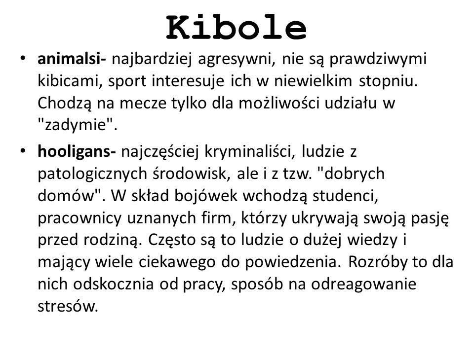 Kibole animalsi- najbardziej agresywni, nie są prawdziwymi kibicami, sport interesuje ich w niewielkim stopniu.