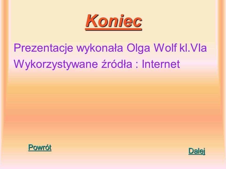 Koniec Prezentacje wykonała Olga Wolf kl.VIa Wykorzystywane źródła : Internet Dalej Powrót