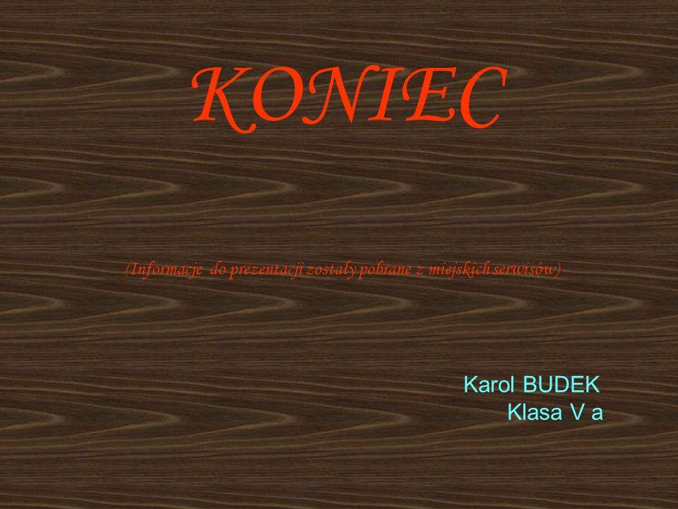 KONIEC (Informacje do prezentacji zostały pobrane z miejskich serwisów) Karol BUDEK Klasa V a