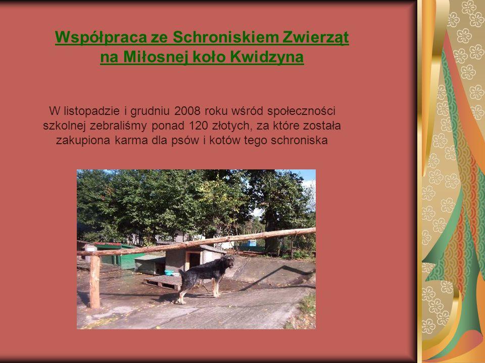 Współpraca ze Schroniskiem Zwierząt na Miłosnej koło Kwidzyna W listopadzie i grudniu 2008 roku wśród społeczności szkolnej zebraliśmy ponad 120 złotych, za które została zakupiona karma dla psów i kotów tego schroniska