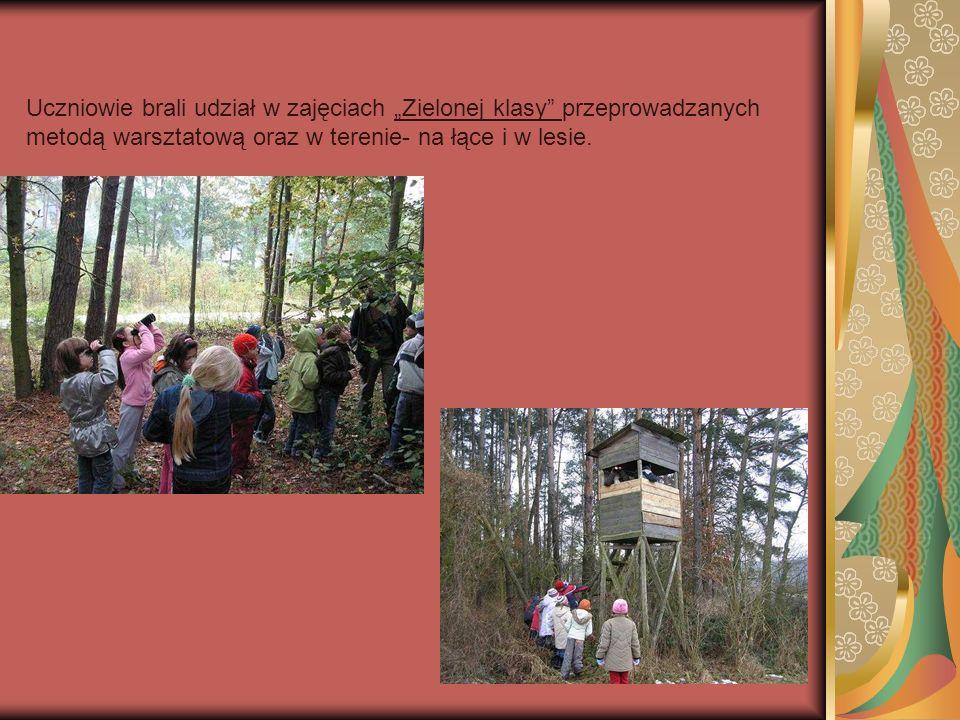 Uczniowie brali udział w zajęciach Zielonej klasy przeprowadzanych metodą warsztatową oraz w terenie- na łące i w lesie.