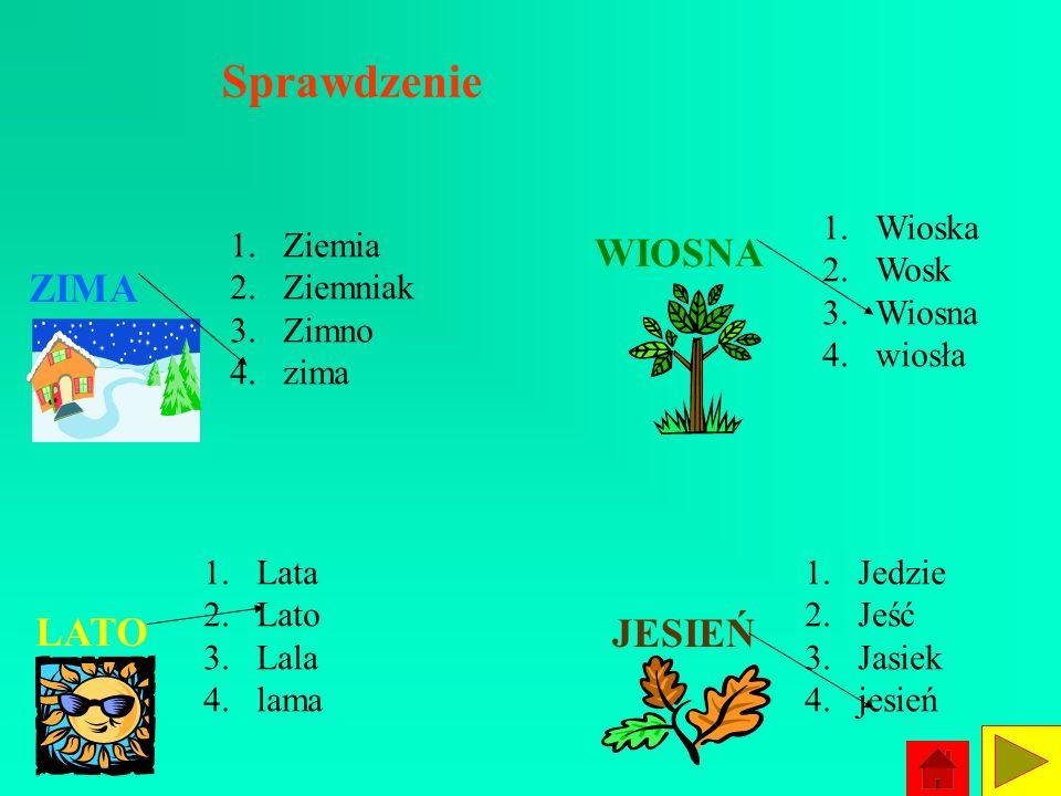 Ćwiczenie 4 Spróbuj znaleźć identyczne wyrazy w grupie wyrazów i zaznacz je strzałeczkami. ZIMA 1.Ziemia 2.Ziemniak 3.Zimno 4.zima LATO 1.Lata 2.Lato