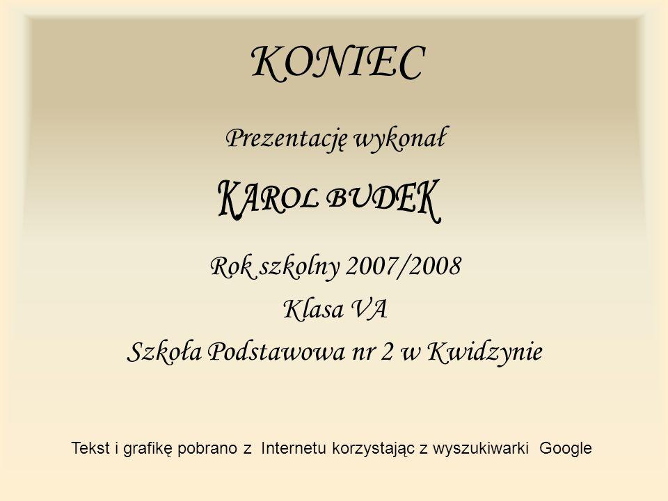 KONIEC Prezentację wykonał Rok szkolny 2007/2008 Klasa VA Szkoła Podstawowa nr 2 w Kwidzynie Tekst i grafikę pobrano z Internetu korzystając z wyszuki