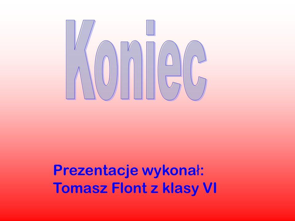Prezentacje wykona ł : Tomasz Flont z klasy VI
