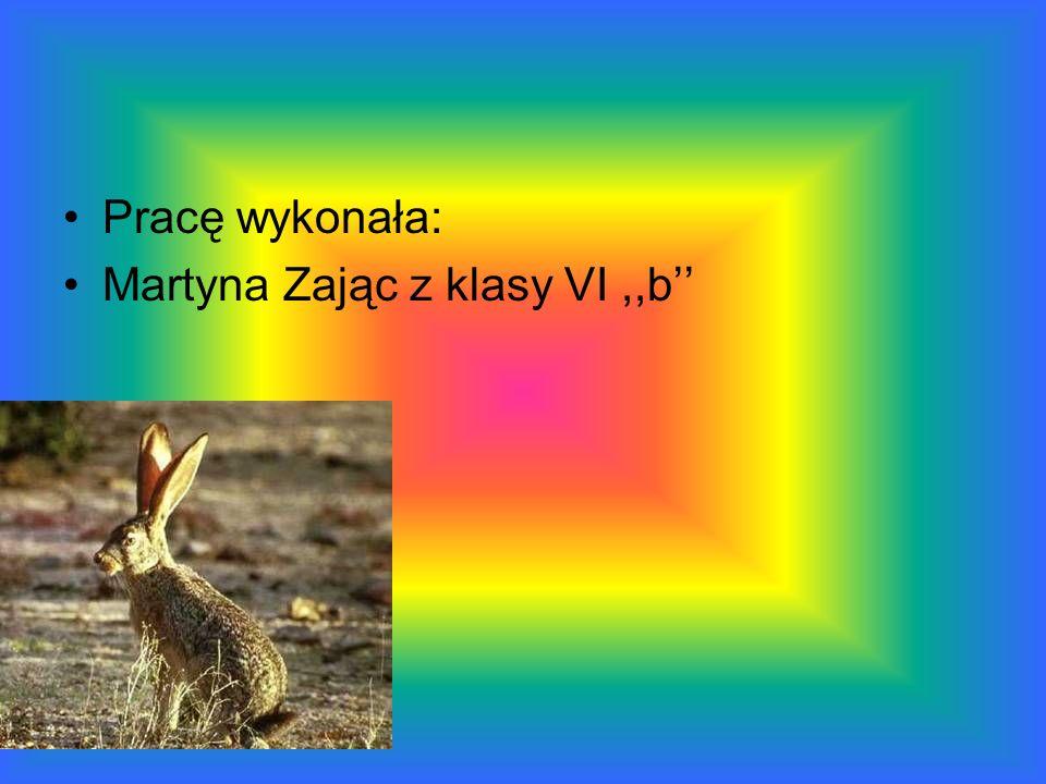 Pracę wykonała: Martyna Zając z klasy VI,,b
