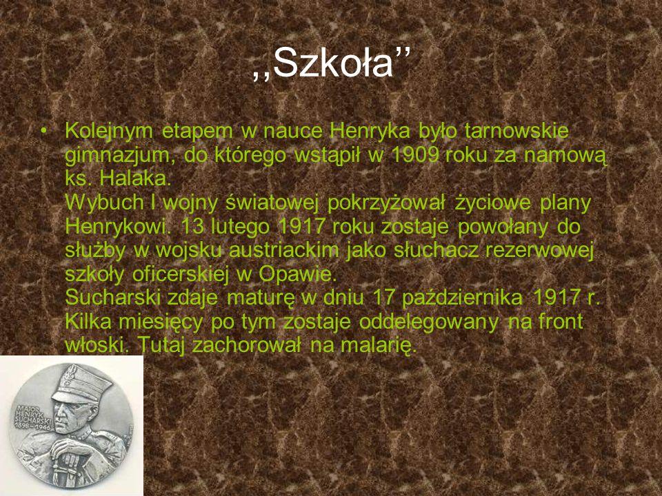 ,,Szkoła Kolejnym etapem w nauce Henryka było tarnowskie gimnazjum, do którego wstąpił w 1909 roku za namową ks. Halaka. Wybuch I wojny światowej pokr