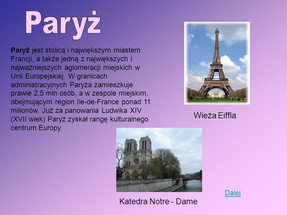 Paryż jest stolicą i największym miastem Francji, a także jedną z największych i najważniejszych aglomeracji miejskich w Unii Europejskiej. W granicac