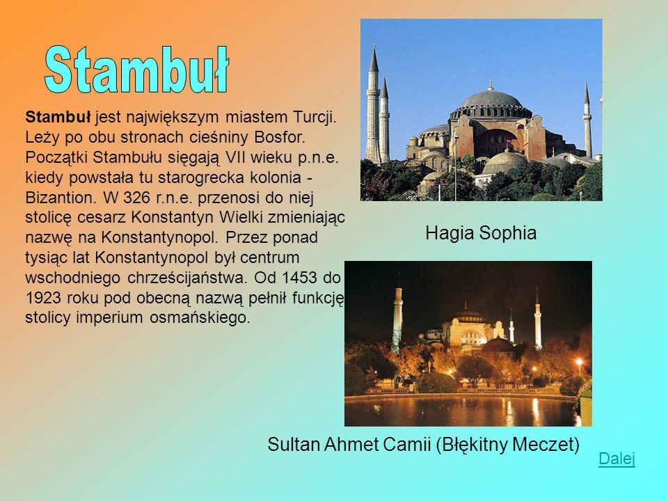 Stambuł jest największym miastem Turcji. Leży po obu stronach cieśniny Bosfor. Początki Stambułu sięgają VII wieku p.n.e. kiedy powstała tu starogreck
