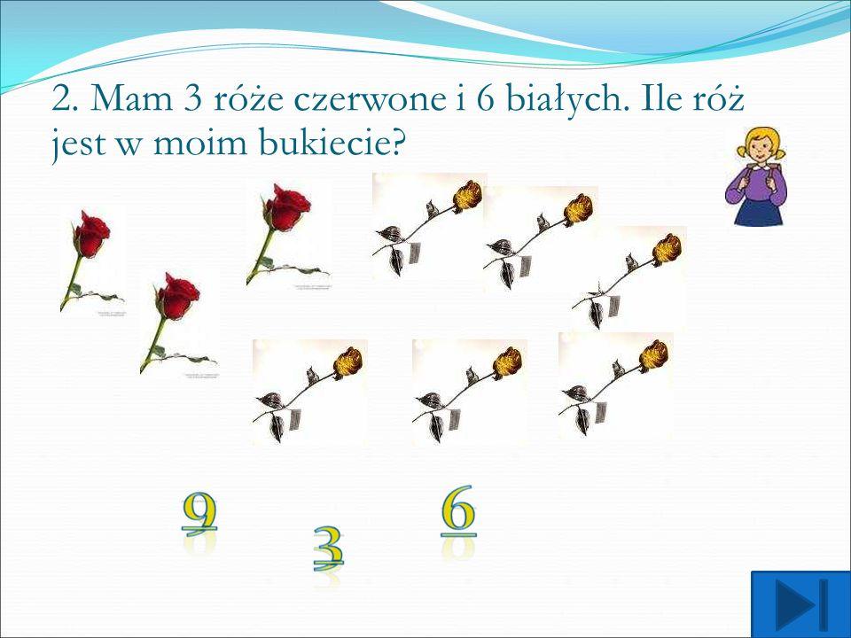 2. Mam 3 róże czerwone i 6 białych. Ile róż jest w moim bukiecie