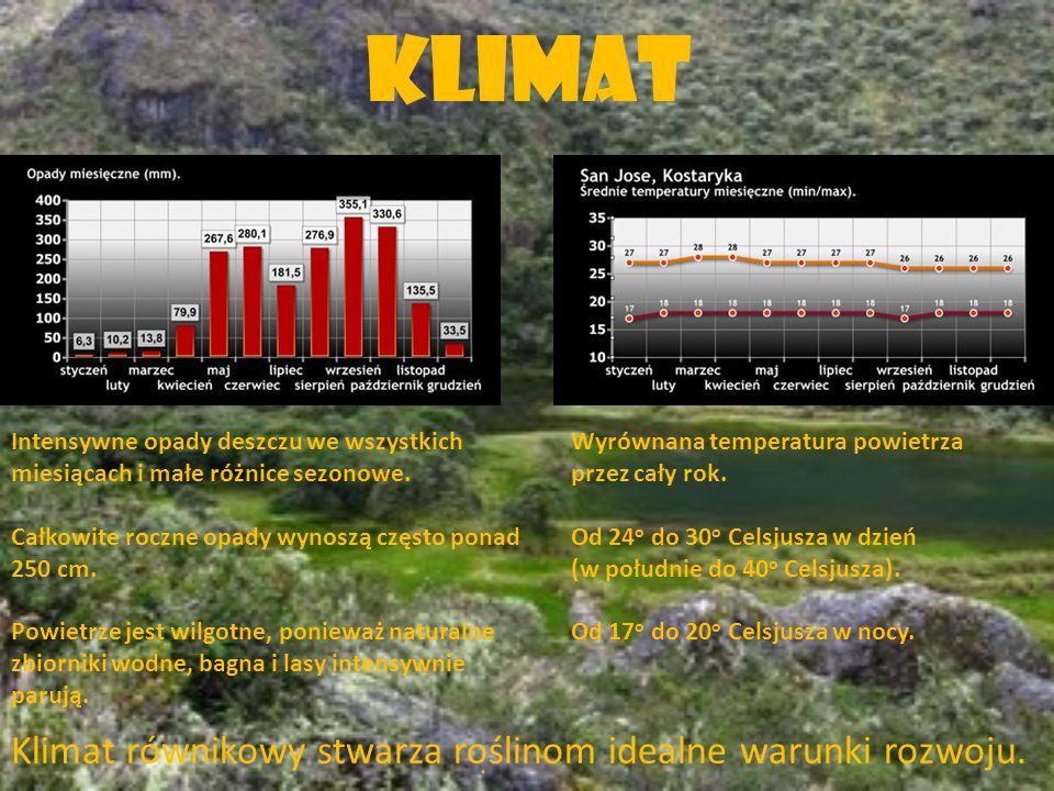 Klimat Klimat równikowy stwarza roślinom idealne warunki rozwoju.. Intensywne opady deszczu we wszystkich miesiącach i małe różnice sezonowe. Całkowit