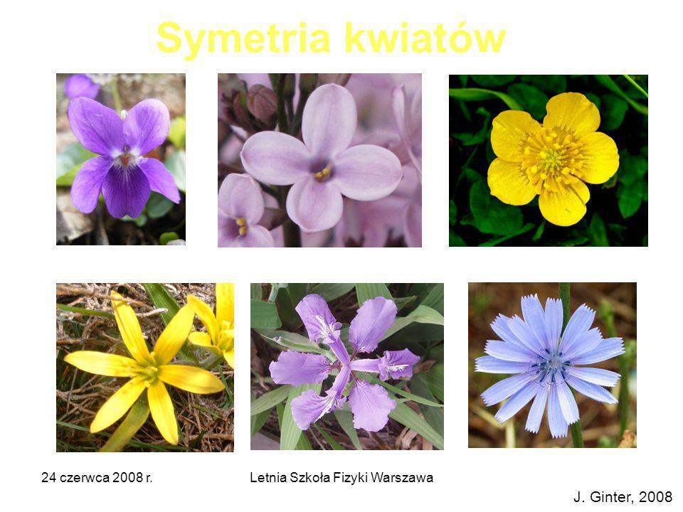 24 czerwca 2008 r.Letnia Szkoła Fizyki Warszawa Symetrie kwadratu 4 3 2 1 e C4C4 C2C2 C43C43 J.