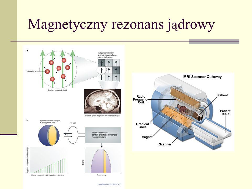 Magnetyczny rezonans j ą drowy