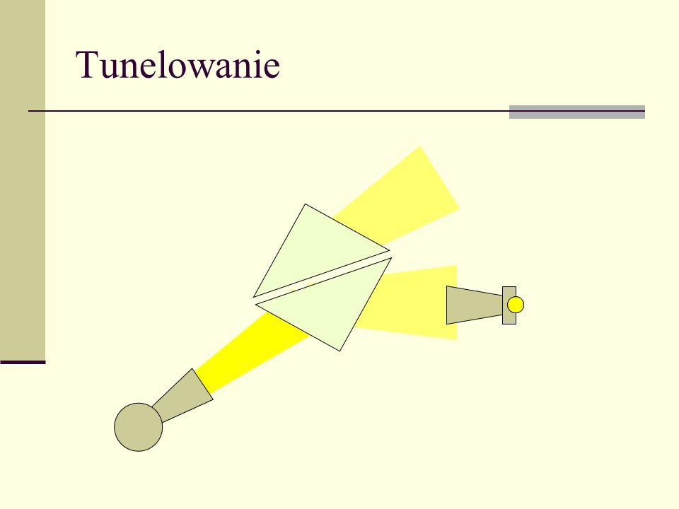 Światłowód planarny Zanik wykładniczy Fala stojąca Fala bieżąca (tu TM 2 ) PŁASZCZ RDZEŃ Zależność dyspersyjna Częstość odcięcia