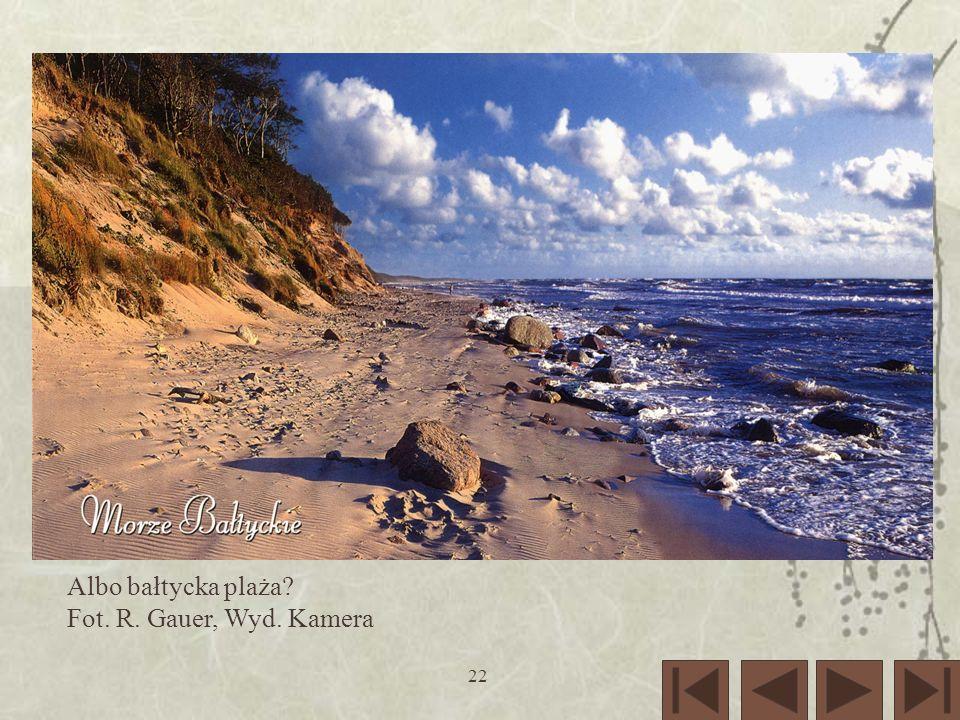 22 Albo bałtycka plaża? Fot. R. Gauer, Wyd. Kamera